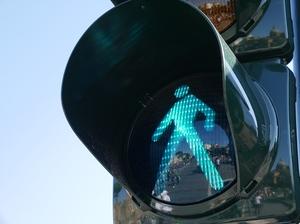 Школьников учат правилам дорожного движения